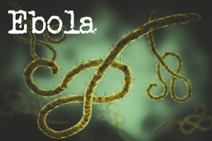Understanding the Ebola Virus: History, Treatment and Prevention - Revised