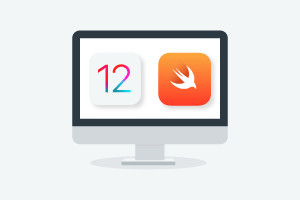 Diploma in iOS 12 and Swift 4 Basics