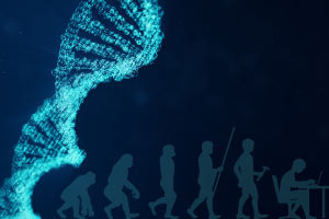 Biology - Evolution, Natural Selection and DNA - Revised