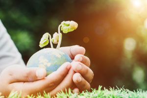 Introduction to Environmental Sustainability - Revised
