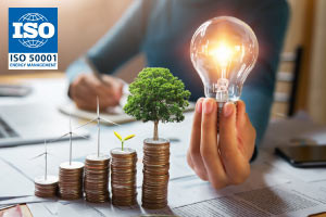 ISO50001:2018 - Elements of Energy Management System (EnMS)