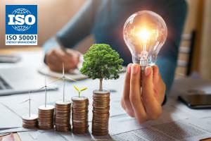 ISO 50001:2018-Elementos do Sistema de Gestão de Energia (EnMS)