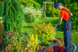 Diploma in Garden Design and Maintenance