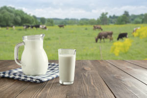 Introduction to Milk Composition