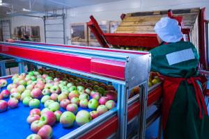 Introduction à la plate-forme Prolongation de la durée de vie des fruits et du stockage de l'atmosphère contrôlée