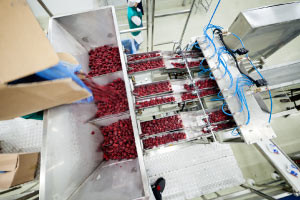 Introducción a los conceptos de extrusión de alimentos y tecnología de Hurdle