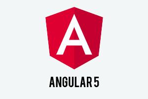 A partire da Angular 5