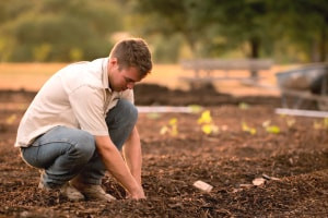 Introduction to Soil Science and Technology