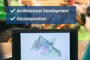 Engineering System Designs: Architectural Development & Decomposition
