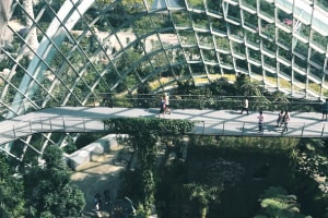 Sustainable Architecture: Selecting Sites and Materials