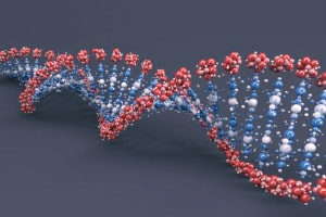 Advanced Diploma in Genetic Engineering - Theory and Application