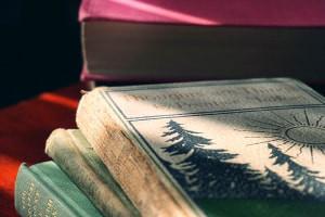 Uma Introdução às Novels góticas