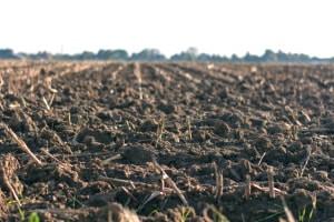 Principios fundamentales de la mecánica del suelo no saturado