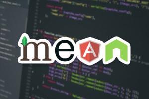 Secure Full Stack MEAN Stack Developer