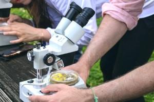 Biologia - Teoria Cellulare, Metabolismo e Biologia vegetale