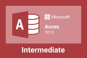 Microsoft Office Access 2013 Intermediate