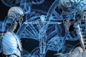 Diploma in Genetics and Evolutionary Developmental Biology