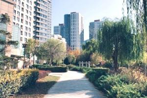 Modules: Urban Gardening for Beginners