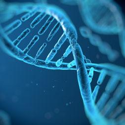 Biología-Genes y Gene Tecnología
