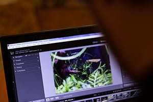 Introduction to Basic Settings and Functions in Adobe Lightroom