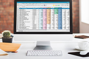 Diploma in Microsoft Excel for Beginners and Experts