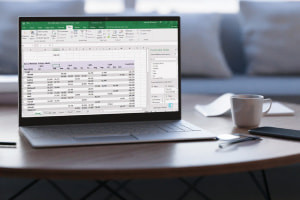 Mastering Data Analysis using Microsoft Excel: Formulas and Pivot Tables