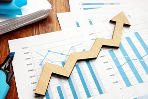 Presenting Financial Information - Making the Numbers Talk