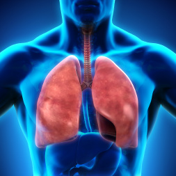 Global Health Initiative: Chronic Obstructive Pulmonary Disease Awareness