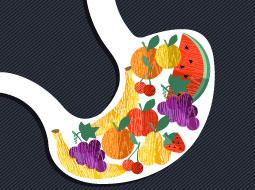 Nutrição Humana-Entendendo macronutrientes Metabolismo
