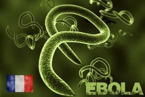 Comprendre le virus Ebola et eviter l'observation