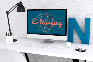 Introduction to E-Learning Theory and Practice