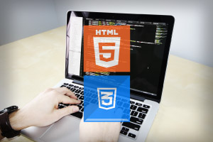 Web Development - Advanced CSS3 Selectors and HTML5 Elements