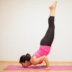 Health and Fitness - Flexibility, Calisthenics and Plyometrics