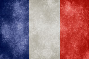 Mastering French Grammar and Vocabulary