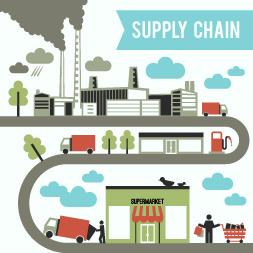 Understanding Supply Chain Ecosystems